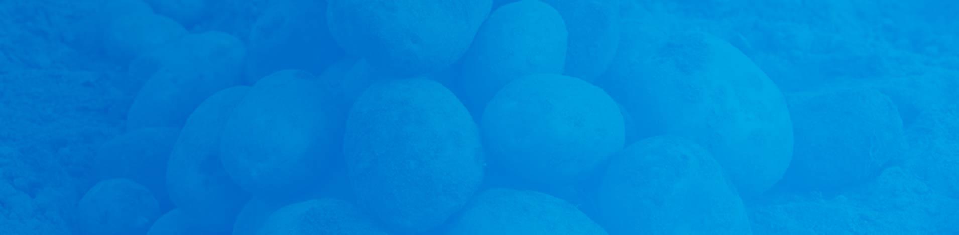 Aviko aardappelen - blauw