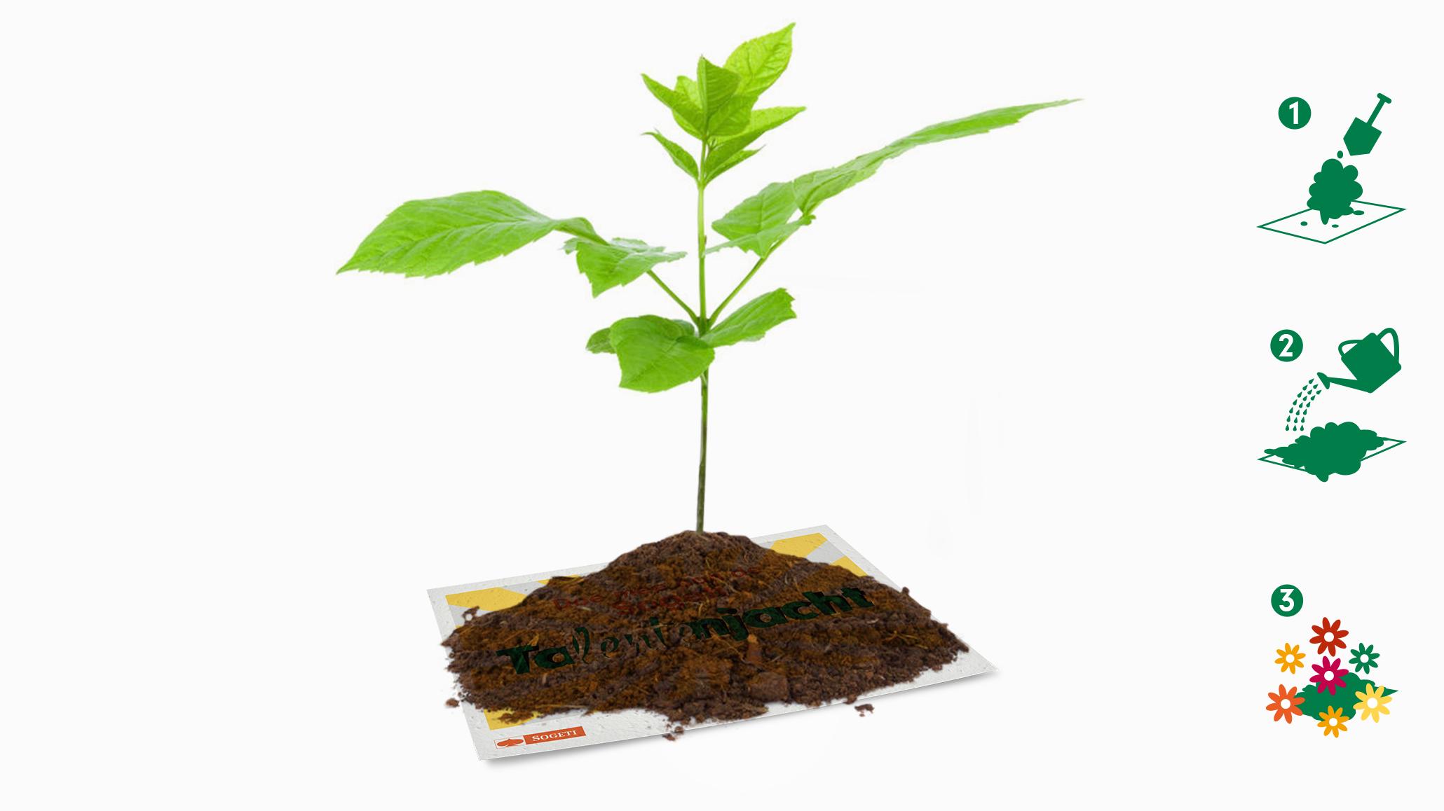 Talentenjacht Mailing met Plant